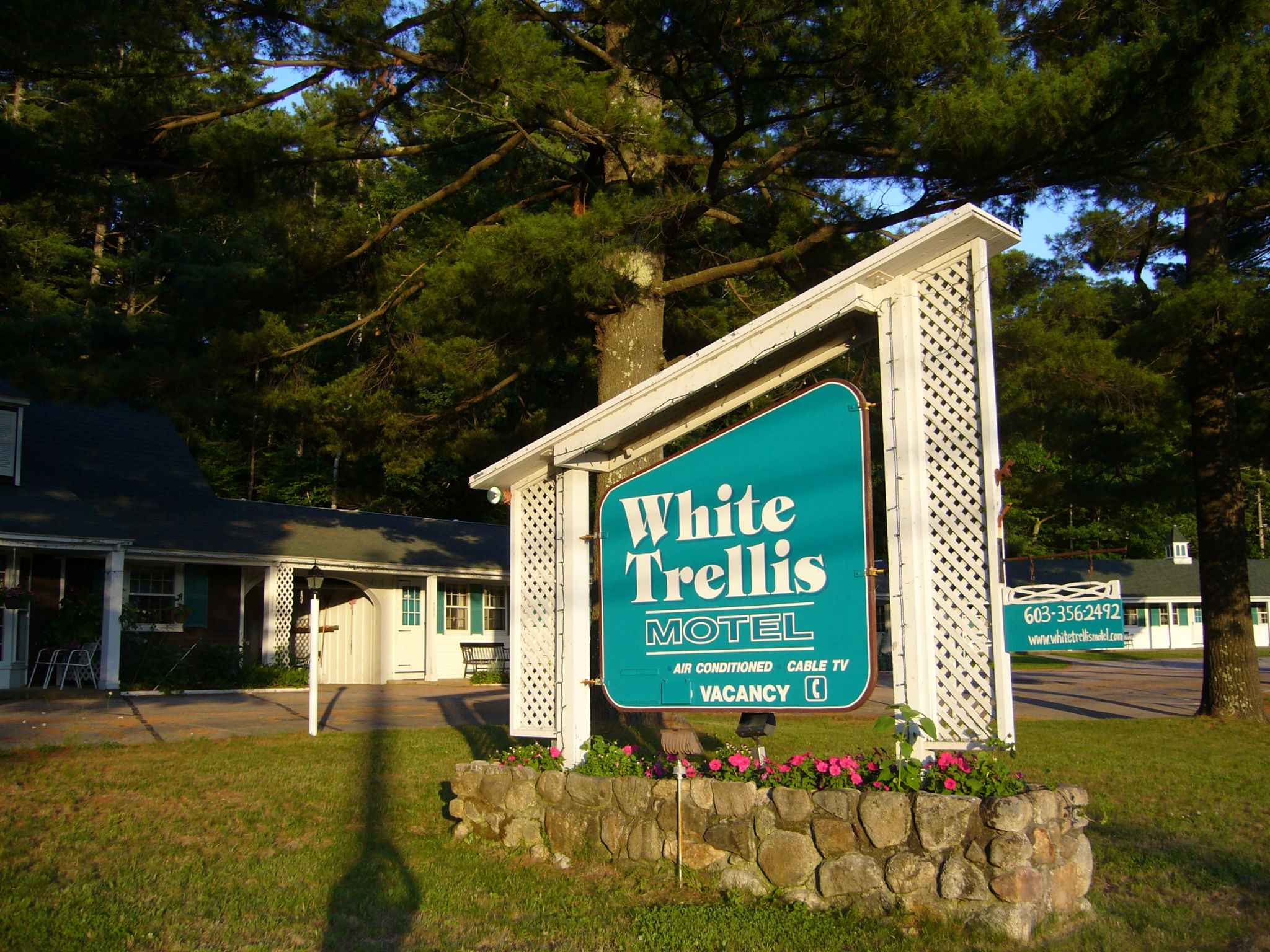 Welcome to the White Trellis Motel